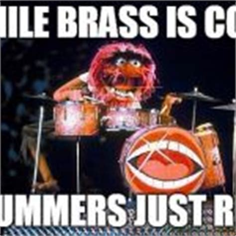 Drummer Meme - the gallery for gt the muppets animal wallpaper