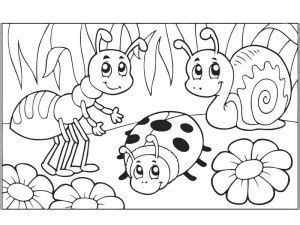 garden insects coloring page bugs activities for preschool the best crafts