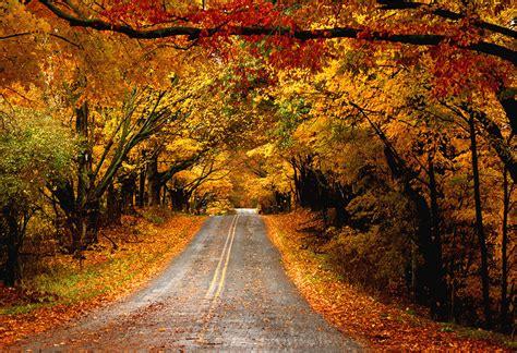 Pure Michigan by gemini (Photo)   Weather Underground