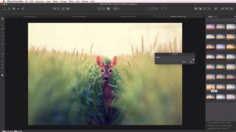 design photo editor online affinity releases a free for now photoshop killer