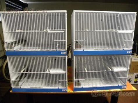 gabbie canarini usate batteria gabbie uccelli salve come cerca compra