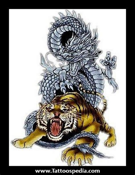 Tattoo Dragon And Tiger Meaning | tiger and dragon tattoo meaning