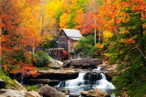 fall colors in virginia when and where to see the best fall color across the