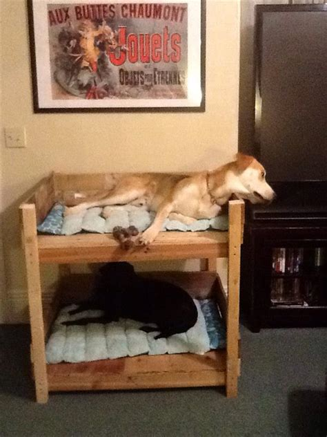diy dog sofa diy pet bunk bed plans to build dog bed pallet