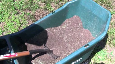 grass seed planter how to plant grass seed quickly and easily