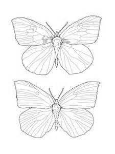 Junonia coenia - fjäril Målarbok | Gratis Målarbilder att