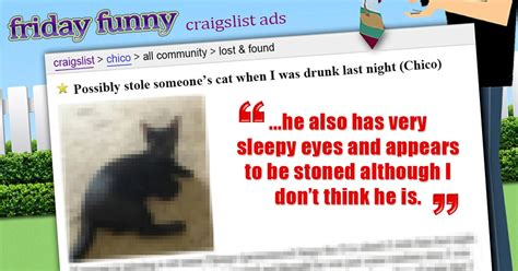 craigslist ads sorry i got and stole your cat