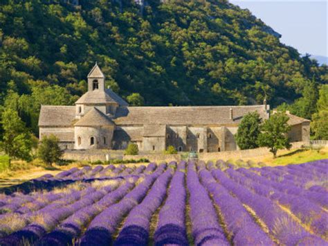 provence france perfectly pered in the hotel du vin chateauneuf du pape 171 luxurytravelconsultant2 com blog