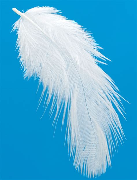 Light As A Feather light as a feather quotes quotesgram