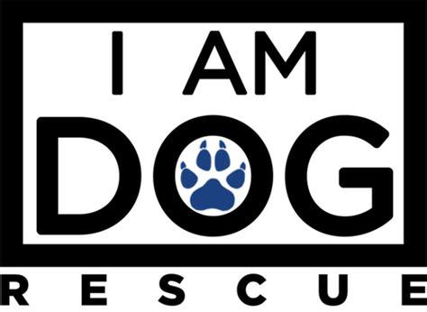 puppy rescue dallas adoptable dogs rescue i am rescue dallas fort worth tx