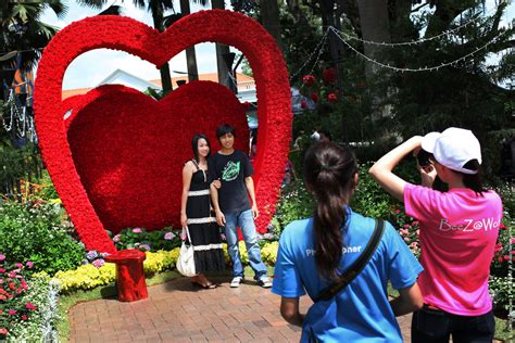 sentosa new year 2015 flower singapore sentosa flower show in bloom 187 gagdaily news