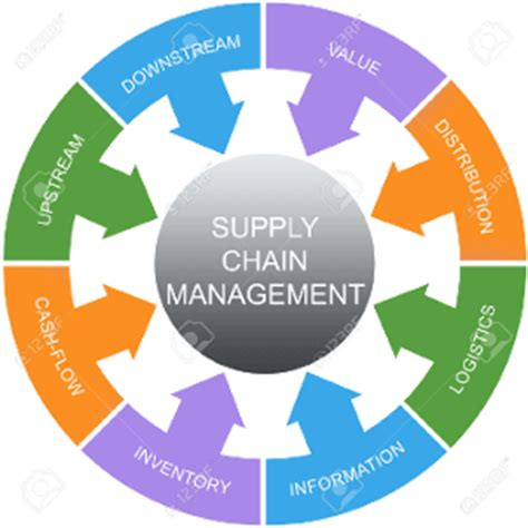 Best Mba Colleges For Supply Chain Management by Top U S Supply Chain Management Programs