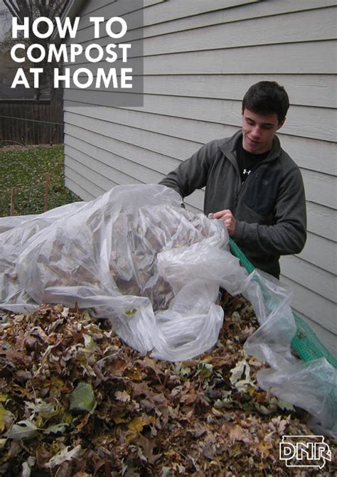 tutorial learn how to compost at home dnr news releases