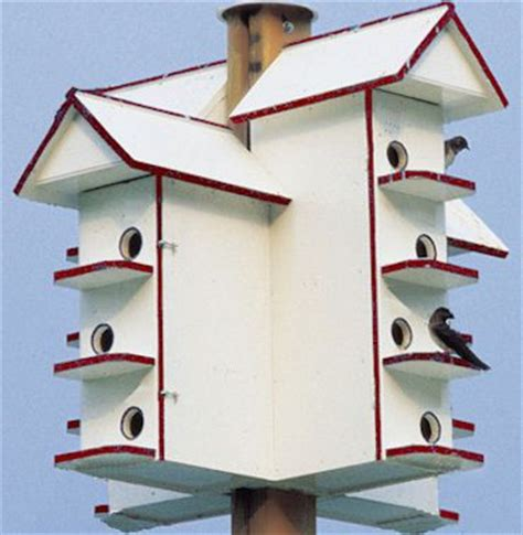 purple martin bird house plans best 25 purple martin house plans ideas on pinterest martin bird house purple