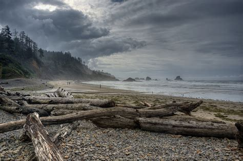 indian beach oregon coast indian beach oregon coast