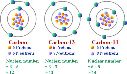 Element With 14 Protons A Normal Carbon Atom Has 6 Neutrons And Carbon 12 Has 6