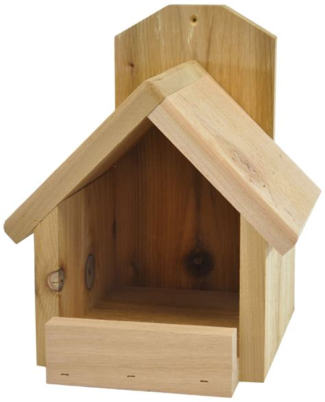 Bird In Everything Birdhouse For Cardinals Cardinal Bird House Plans