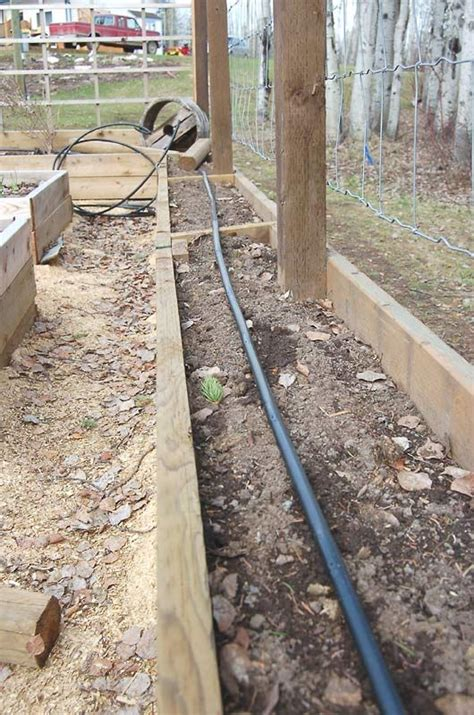 drip irrigation for raised beds pinterest the world s catalog of ideas