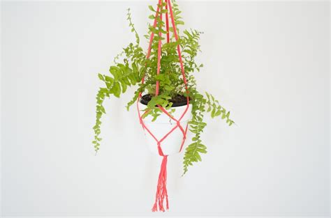Macrame Plant - picture of cool and simple diy macrame plant holder