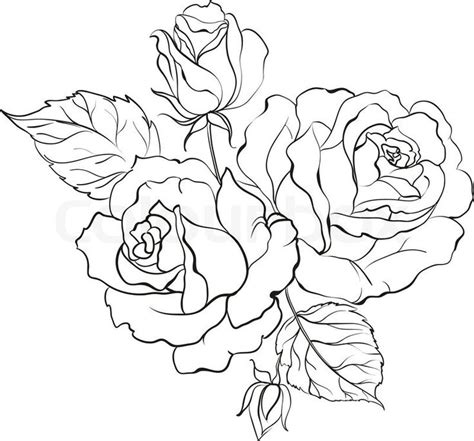 rose bunch tattoo 25 best ideas about outline on simple