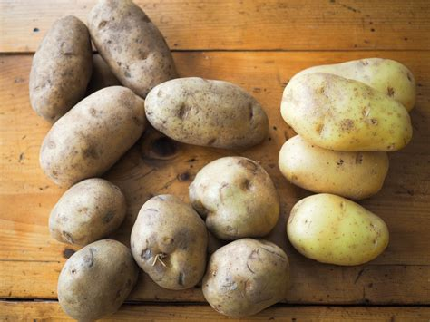 best potato for gnocchi how to make light and tender potato gnocchi serious eats