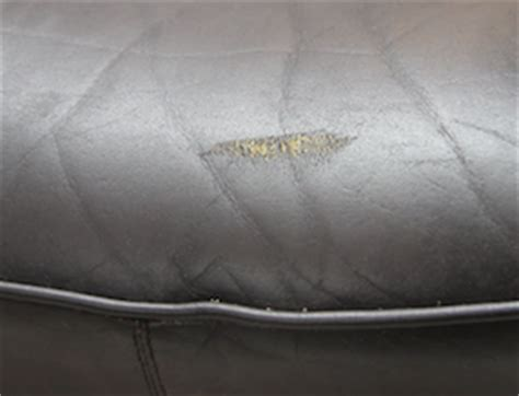 scratched leather couch how to repair scuffs scratches on leather furniture clinic