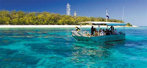 boat shoes cairns day tour ex gold coast lady elliot island eco resort