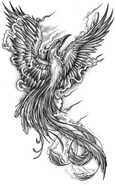 black and grey phoenix tattoo designs fenix on tattoos and