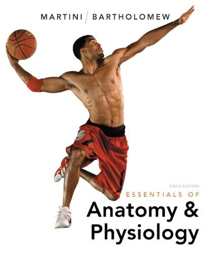 essentials of human anatomy physiology plus mastering a p with pearson etext access card package 12th edition 9780321950000 essentials of anatomy physiology plus