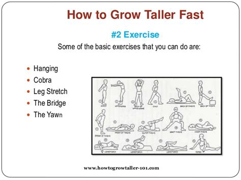 how to a fast how to grow taller fast