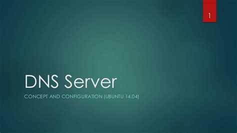 configure ubuntu server as dns dns server setup on ubuntu vps master slave