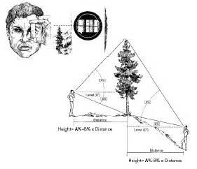 strumenti  misura forestali
