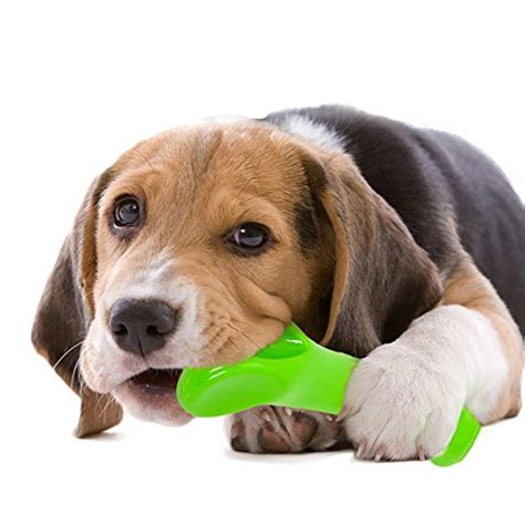 best bones for aggressive chewers durable chew toysoneisall bone chew for puppy dogs indestructible for