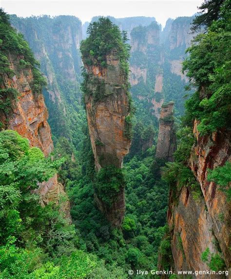297807 the kast place on earth avatar hallelujah mountain tianzi mountain nature reserve