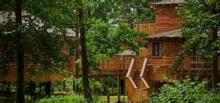luxury treehouse holidays and breaks center parcs