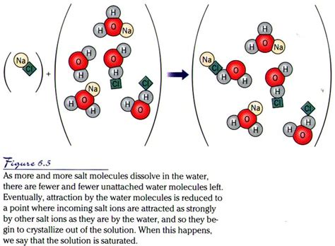what does a salt l do water salt and the hydrologic cycle