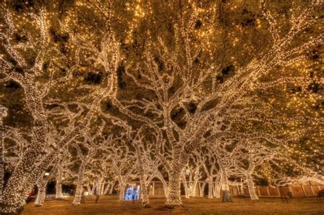 escape into austin s back yard with a hill country lights tour