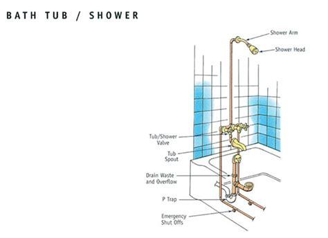 plumbing 101 shelton plumbing