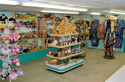 Home Design Wilmington Nc by Explore Our Zoo Gift Shop Tregembo Animal Park