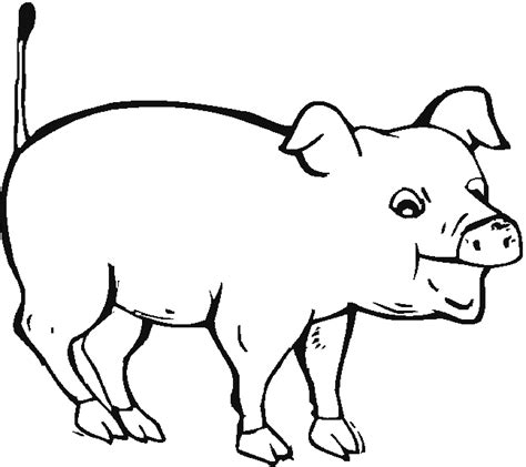 coloring page pig animal coloring pages 14