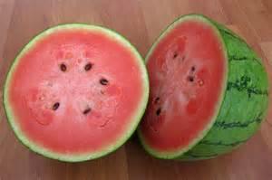 thai watermelon from aloun farms tasty island