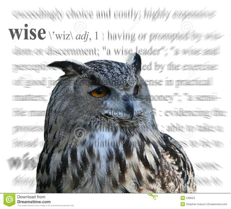 themes in literature wise owl wise stock images image 548024