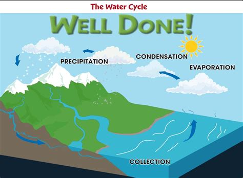 water cycle diagram with explanation diagram of water cycle diagram site