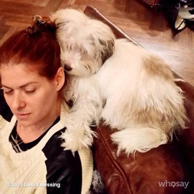 dogs messing in the house 53 best celebrities and their dogs images on pinterest animal shelter animal