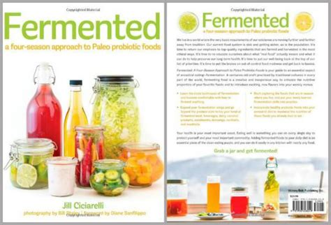 E Book Fermented Food For Health book review quot fermented quot by ciciarelli breaking uk