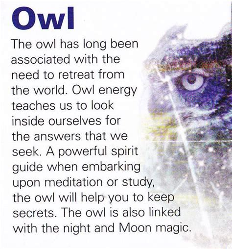 owl symbolism pure spirit visit the post for more owls pinterest owl tattoo