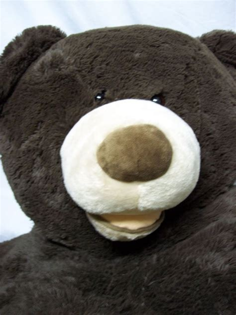 jumbo teddy bears 1000 ideas about jumbo teddy on