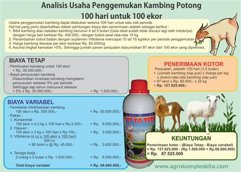 Bibit Kambing Jawa the gallery for gt bibit kambing jawa