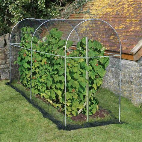 fruit tree cage agriframes domed roof fruit cage garden