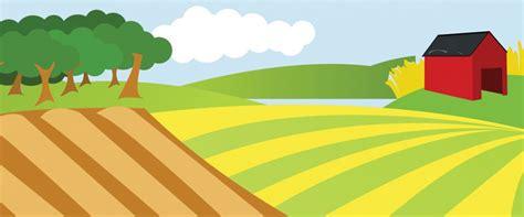 cassetto previdenziale aziende agricole gestione deleghe aziende agricole ravenna apimai ravenna